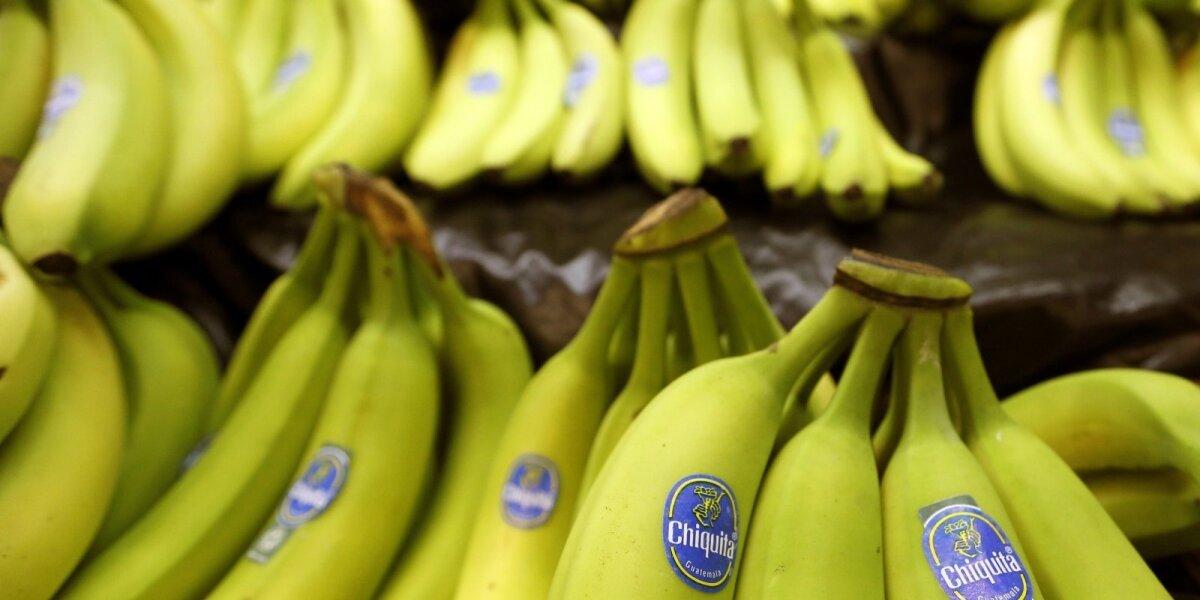 Chiquita bendrovės bananai