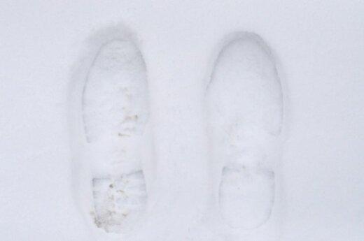 Снегопад уничтожил 800 домов в китайском Синьцзяне