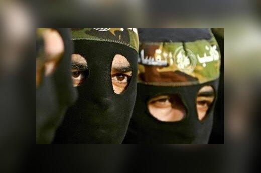 """Террористов """"Аль-Каиды"""" косит чума"""