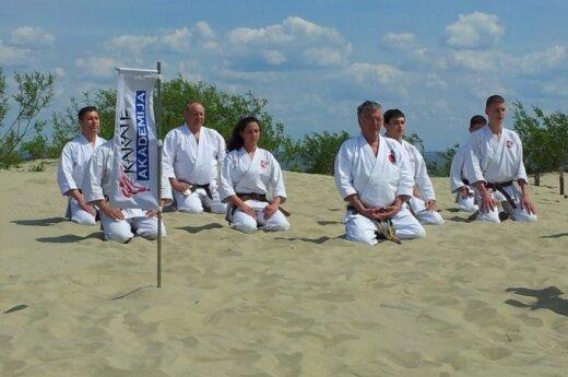 kendo, karate