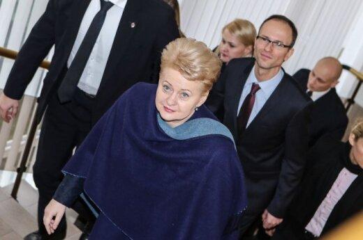 Президент Литвы: обещания ЕС восточным партнерам достаточны