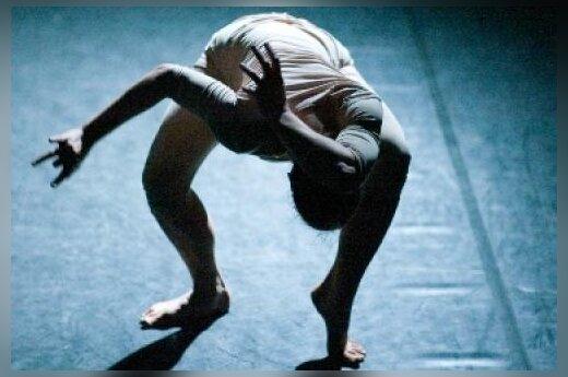 """В Вильнюсе покажут танцевальный спектакль """"Сон саламандры"""""""