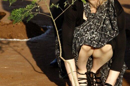 Мадонна в Малави посадила дерево