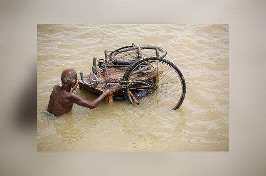 Potvynis, Indija