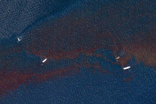 Эксперты не фиксируют новой утечки нефти в Мексиканском заливе