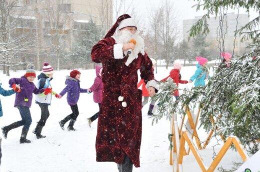 Во дворах многоквартирных домов зажгутся рождественские елки