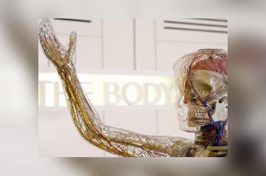 Dirbtinė moteris - viena iš daugelio Londone atidaromo medicinos muziejaus eksponatų