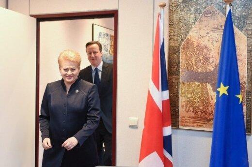 Davidas Cameronas ir Dalia Grybauskaitė