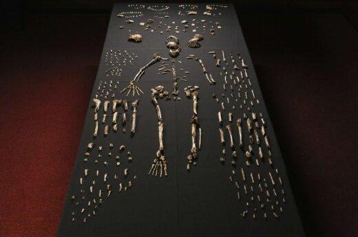 """Антропологи в Африке нашли """"звездного"""" древнего человека"""