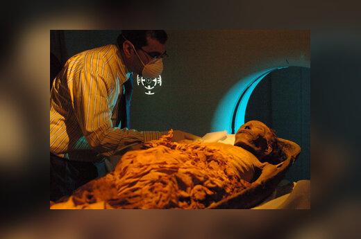Spėjama Faraono Tuthomis I (Tutmosio) mumija