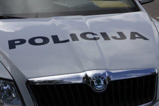 Vaisinga Vilniaus policijos patrulių diena