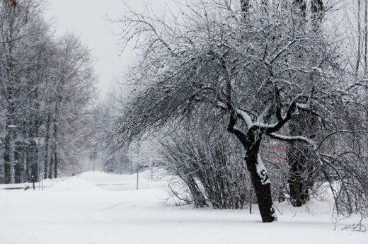 Pogoda: Mokro i śnieżnie