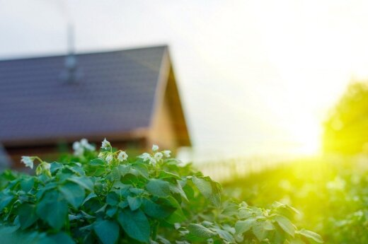 Lithuanian government to spend €1m on making homes energy efficient