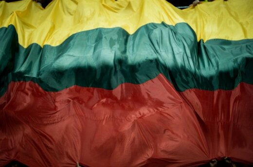 """Government wants to establish """"Institute of Lithuania"""""""