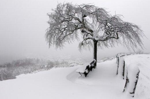 Зима пришла во Францию