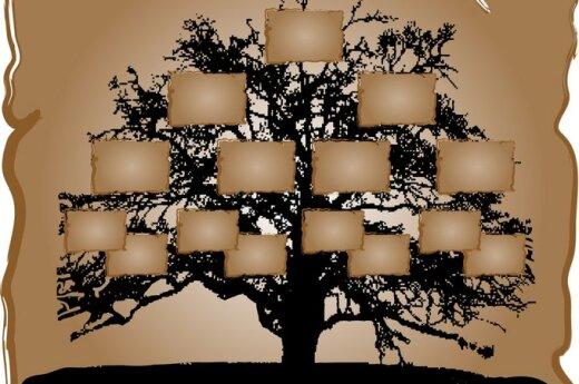 Genealoginis medis, šeimos, giminės istorija, biografija, praeitis