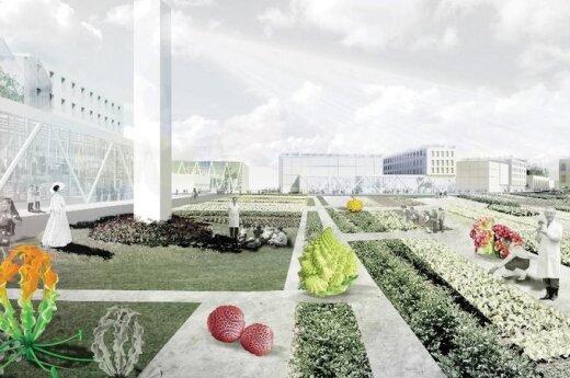 Projektas Multitalented City
