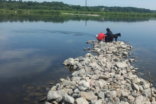 В Немане, купая собаку, утонул 9-летний мальчик