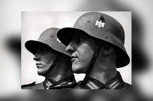 Żerko: Sojusz z Hitlerem był po prostu niemożliwy