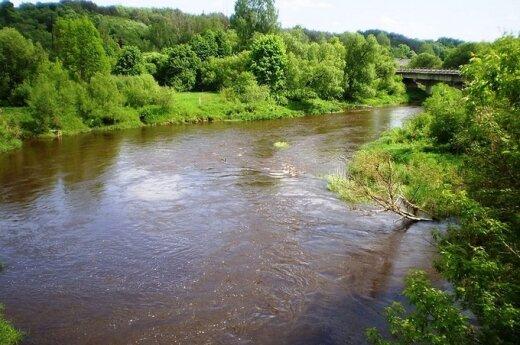 Vandens kokybė kelia rūpesčių Dubysos upėje ir dar keliuose vandens telkiniuose