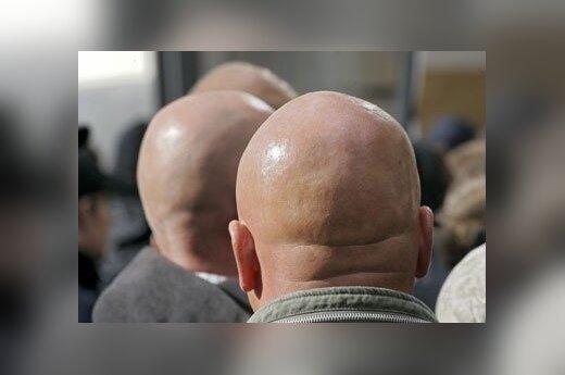 Немецкая полиция арестовала 24 неонациста