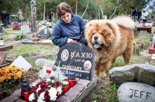 Oficialios gyvūnų kapinės Lenkijoje (asociatyvi nuotr.)
