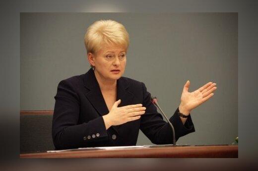 Грибаускайте: политический диалог с Лукашенко будет продолжаться