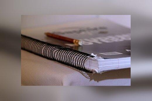 Mokinys pasisakė: sprendimas ilginti mokslo metus yra katastrofa
