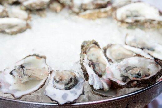 """Gurmanų rojus Berlyne: """"Michelin"""" žvaigždutės – 14 restoranų"""
