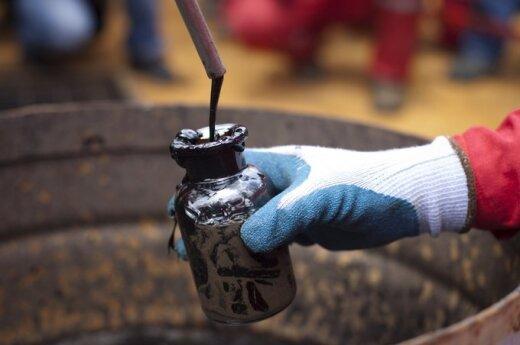 Baudos už naftos išliejimus - nacionalinis reikalas?