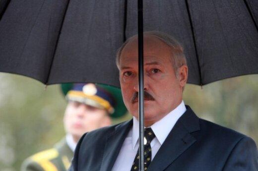 Лукашенко игнорирует теледебаты кандидатов в президенты