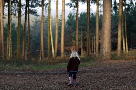 Prof. R.Juknys: priėmus miškų įstatymą, bus išnaikinta visa urėdija miško