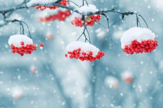Pogoda na weekend. Śnieg