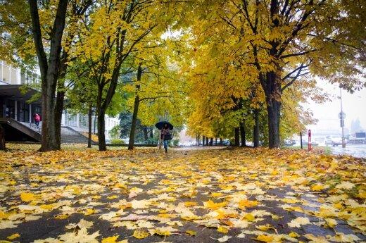 Погода: ноябрь принесет перемены