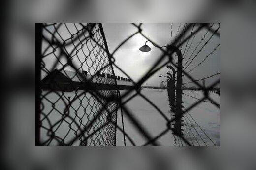 В Москве отреагировали на высказывания МИД Польши об освободителях Освенцима