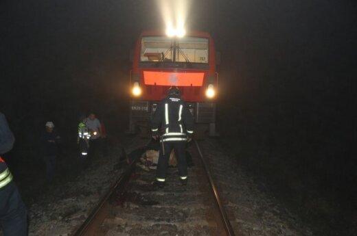 Naktį ant bėgių užlipusi karvė sustabdė traukinį