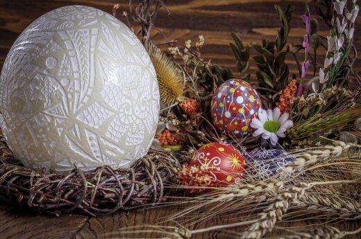 Kuo vertingi stručių, putpelių ir kitų sparnuočių kiaušiniai?