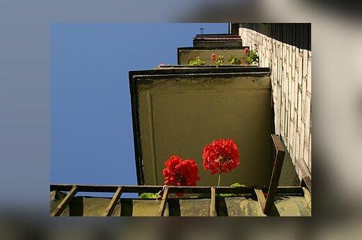 Daugiabutis namas, balkonas, nekilnojamasis turtas