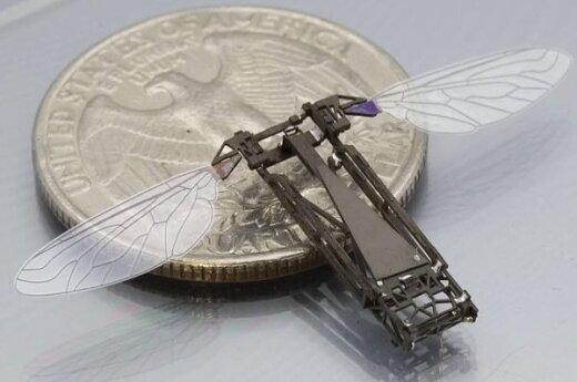 Harvardo mokslininkai sukūrė robotą-bitę