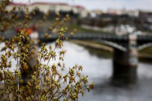 Pavasaris Vilniuje