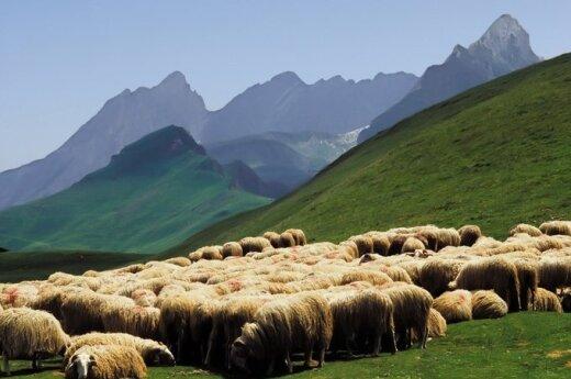 Kalnai  Ispanijoje