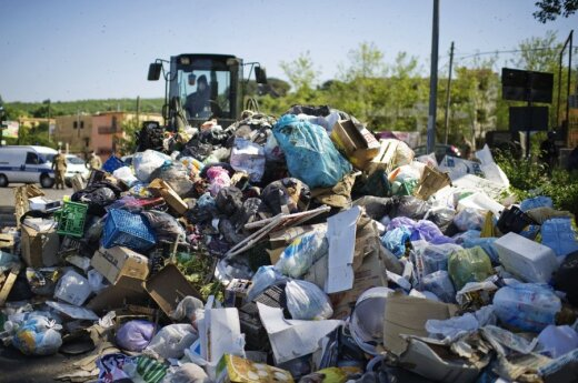 Эксперты: половина производимой в мире еды выбрасывается