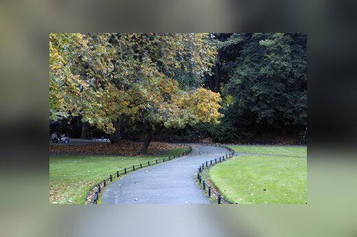 Parkas, takas, ramybė