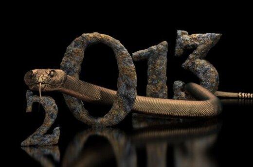 2013: Rok Węża