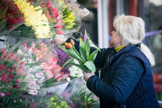 Заболевшая продавец цветов: государство мне не поможет