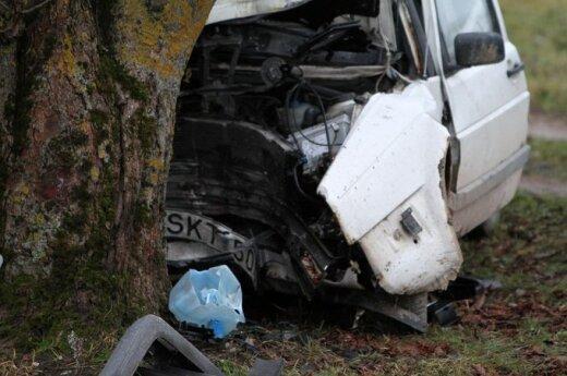 В Каунасском районе в дерево врезался автомобиль, водитель погиб