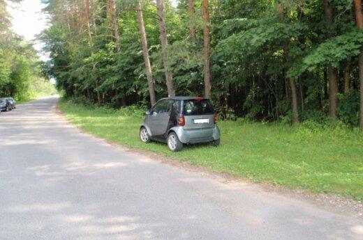 Automobilis, pastatytas ant žolės