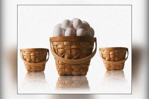 Kiaušiniai, krepšys, dalybos, rezultatas, ekonomika, verslas