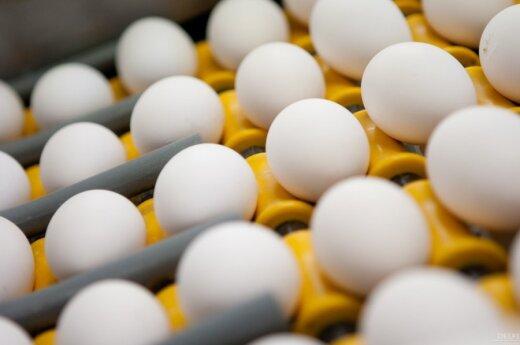 Подорожал корм - подорожают и яйца