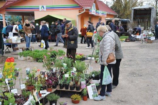 Lietuvos šeimų išlaidos vartojimo prekėms balandį augo